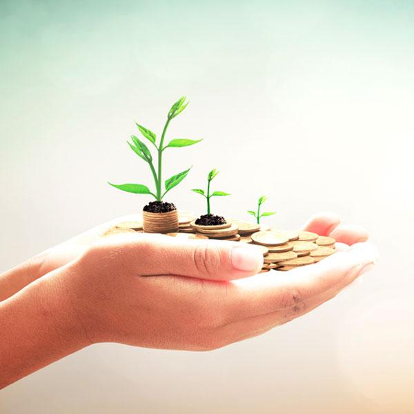 Hand mit Geld und Pflanzen, Symbol für Wachstum
