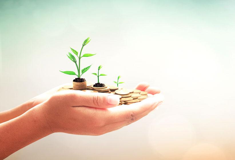 Hand mit Geld - Symbol für Wachstum